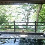 「猿ヶ京温泉」の日帰り温泉デート、おすすめの楽しみ方!
