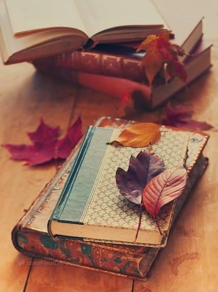 ほっこりした気分に♡「紅葉ネイル」で指先を秋色に染めちゃおう!