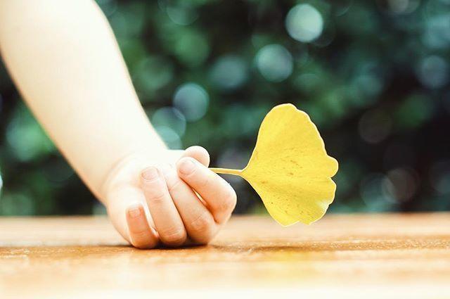 秋は紅葉色にチェンジ♡オレンジ&マスタードで作る大人の秋色ネイル