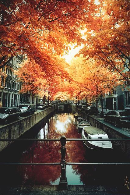 秋の訪れを感じる「#ワンカラー」で大人のお洒落ネイル🍂