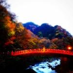 絶景をアナタに約束!きれいな日光の紅葉スポット4選