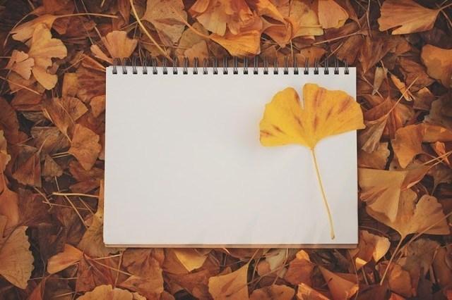 秋冬の定番♪『アーガイル柄ネイル』カタログ2016