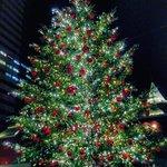 【360°画像あり】大切なあの人とロマンチックなクリスマスを過ごせるおすすめのデートスポット♡