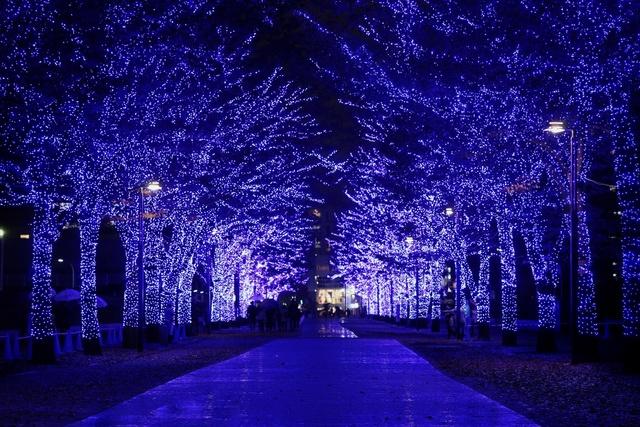 森星ちゃんも大興奮♪「青の洞窟SHIBUYA」点灯式レポート♡