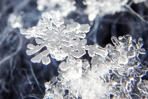 Detail Of Snowflakes